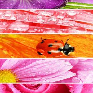 Детски килим Пролет 120-160 см от фирма Мертекс-София